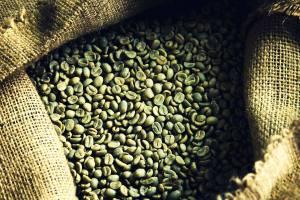 5_1green_beans_01